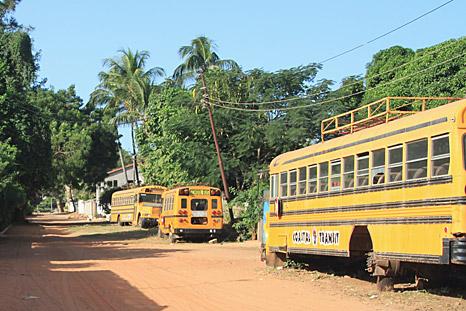 Gedumpte schoolbussen in Fajara / Gambia